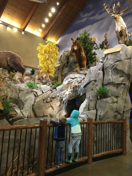 Visited Cabela's today