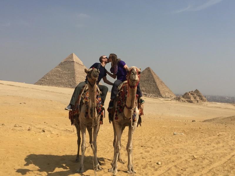 More camels! - egypt 2016