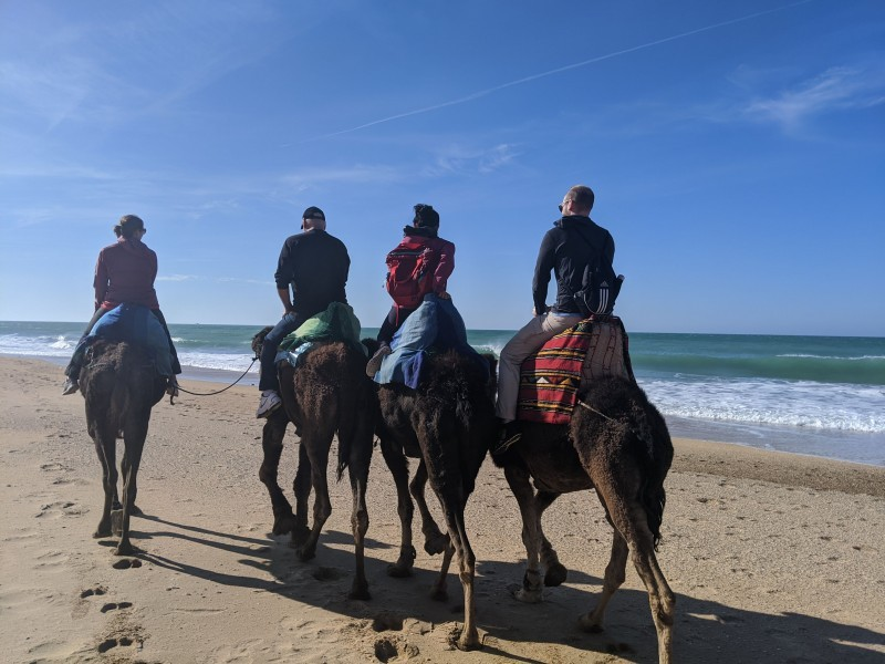 Riding camels with the family - morocco 2019