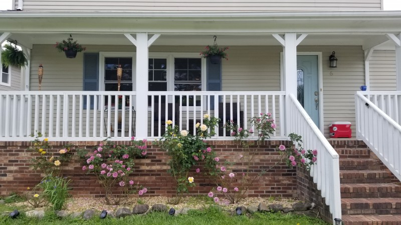 RAyano house front with roses