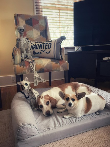 Gus and Dood at Halloween