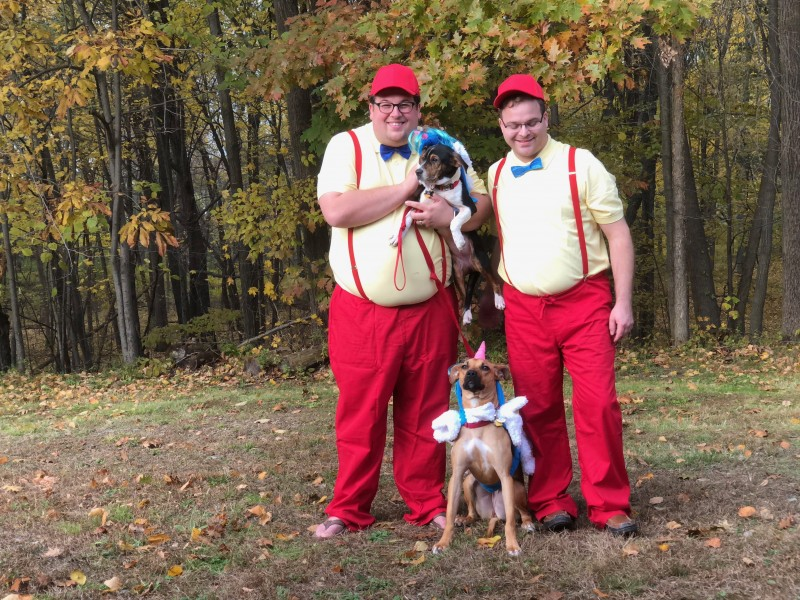 We dressed as Tweedle Dee and Tweedle Dum for our first Halloween in our new house