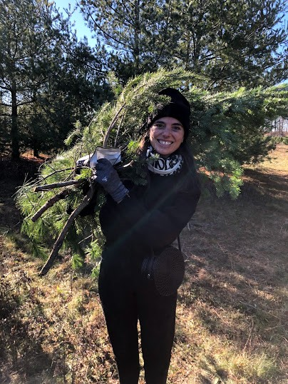 Every year we have a wreath making party with our friends. Here's Aeriel with her haul of branches for the party!
