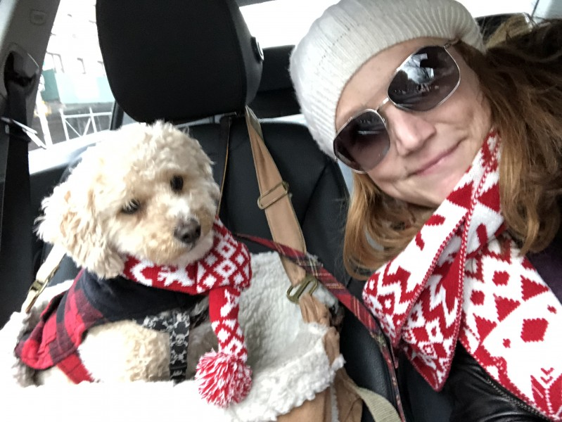 It's totally normal to have a matching scarf with your dog, right?