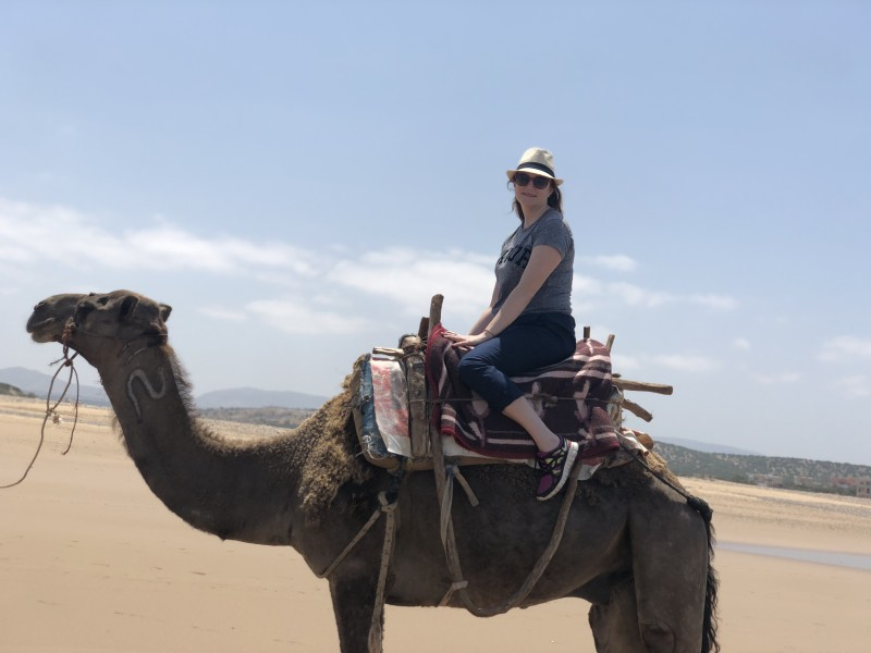 I was on a camel in Morocco on hump day!
