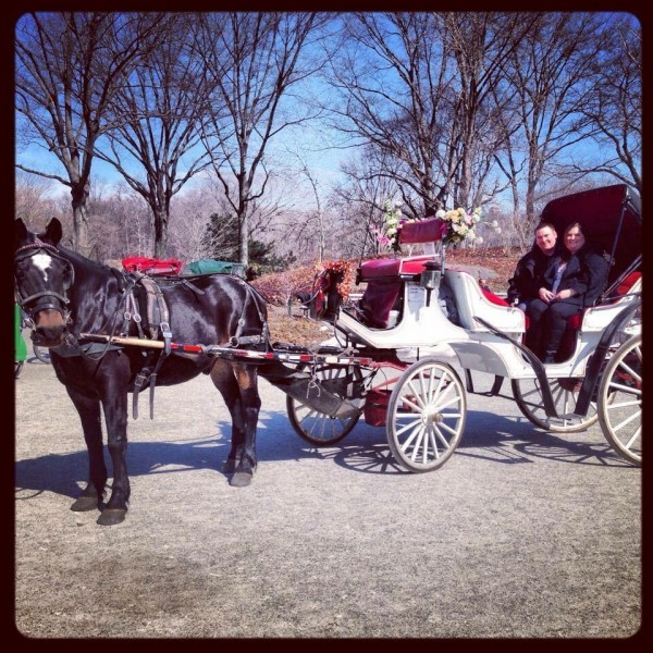 Horse and carriage ride in Central Park NYC