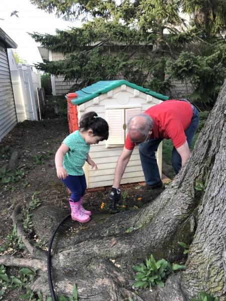 garden with Grampy