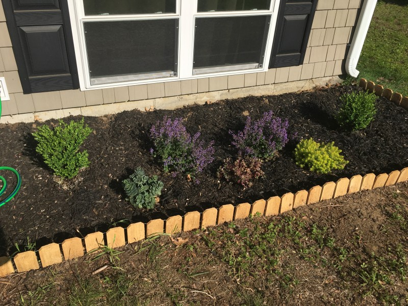 Our very first attempt at landscaping a small area out front.