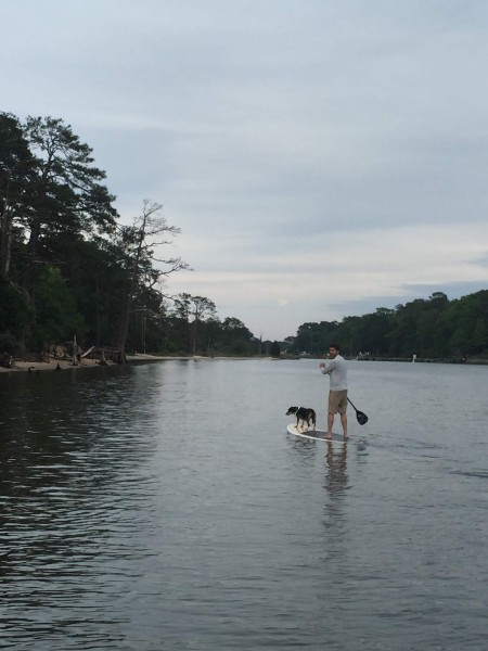 Paddleboarding with our dog willow