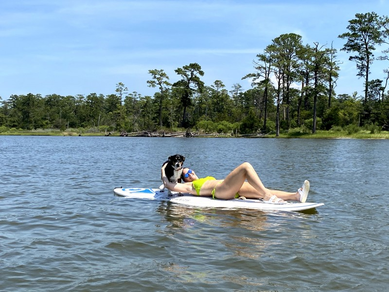 Summer paddleboarding with our dog willow