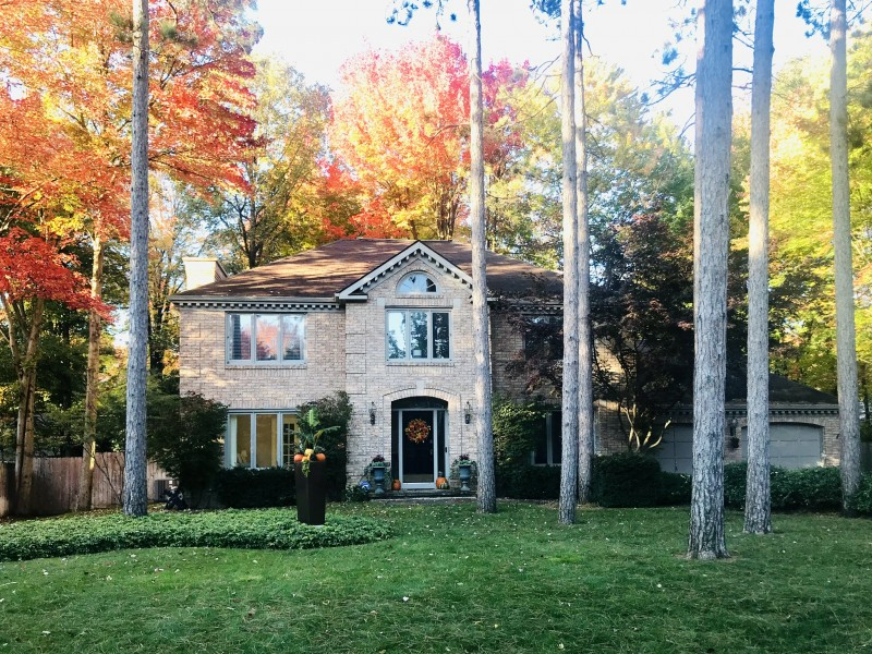 Our favorite season is Fall, we love that our home is surrounded by colorful trees.