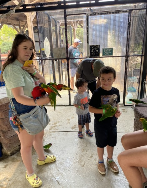 The kids weren't too sure about feeding the parrots!