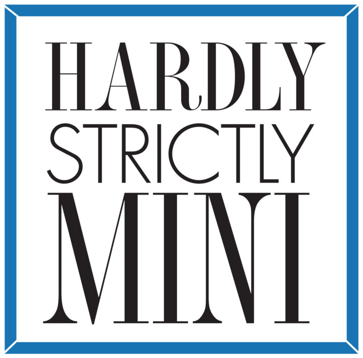 Hardly Strictly Mini CALL FOR ARTISTS