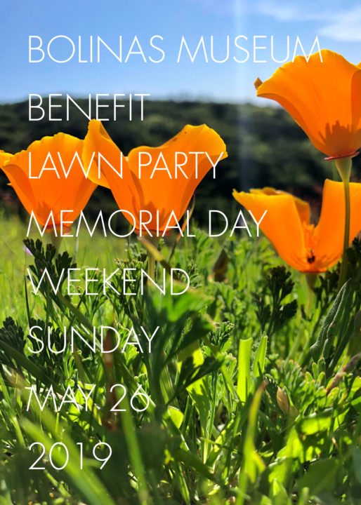 Annual Benefit Lawn Party