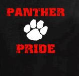 PANTHER PRIDE PAW t-shirt design idea
