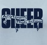 HIGH SCHOOL CHEER BANNERS t-shirt design idea