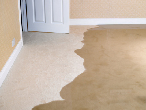 Can you Save a Flood Damaged Carpet or Rug?
