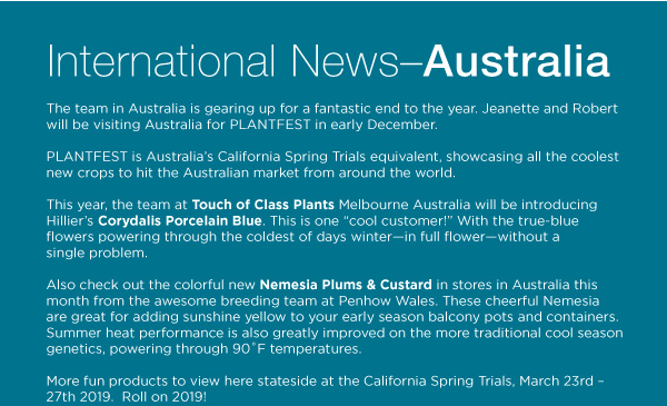 PlantHaven Halloween e-Brief Newsletter - October 2018
