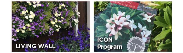 PlantHaven eBrief Newsletter - February, 2019