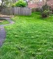 Gorgeous Fenced Yard
