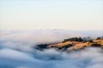 Foggy am hillside view