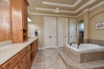 Master bath with Greek shower and jetted tub.