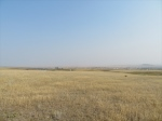20 Acres,  Havre, MT 59501