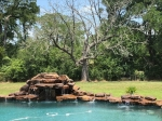 Pool with water fall feature