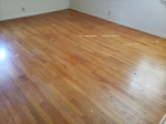 These BEAUTIFUL HARDWOODS are under the new carpet