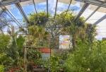 Flora Grub nursery