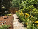 Gardenpath with Blackeyed Susan
