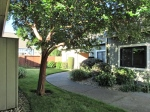 841 2nd St. West,  Sonoma, CA 95476