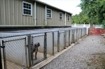 Nine indoor outdoor covered kennels