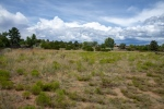 Front Yard - Land.jpg