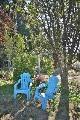 backyardgarden5.jpg