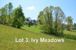 Lot 3 Ivy Meadows