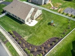 Mature landscaping for privacy