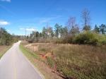 Steele Bridge Road,  Dawsonville, GA 30534