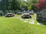 Picnic area with BBQs