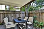 New Backyard 3