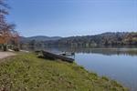 Beaver Lake Across the Street
