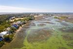 Marsh setting