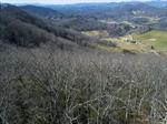 Drone view W