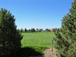 4523 Beverly Dr,  Berthoud, CO 80513