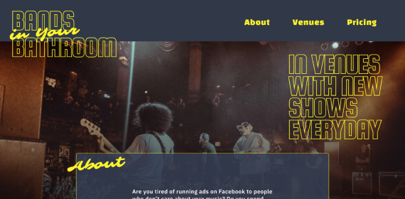 Bands in your bathroom landing page design