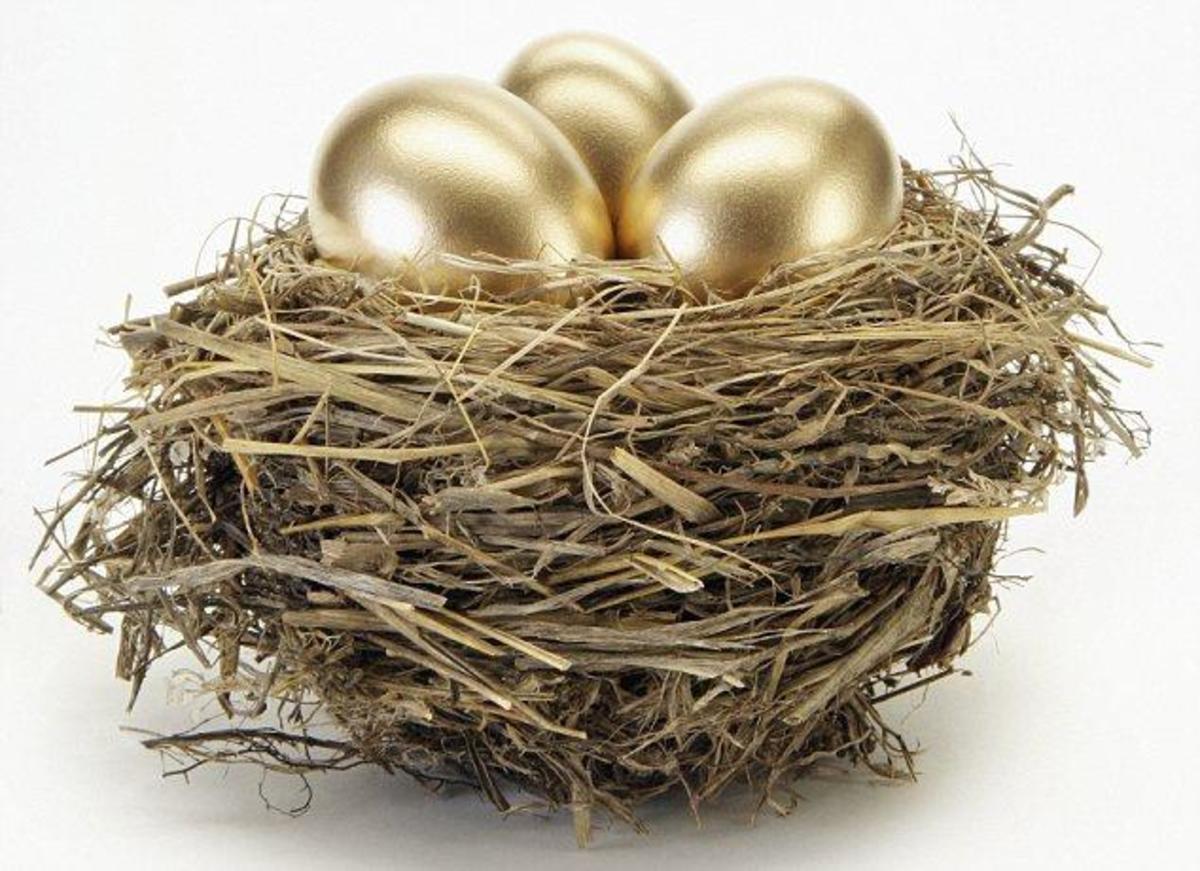 Nest egg dpi