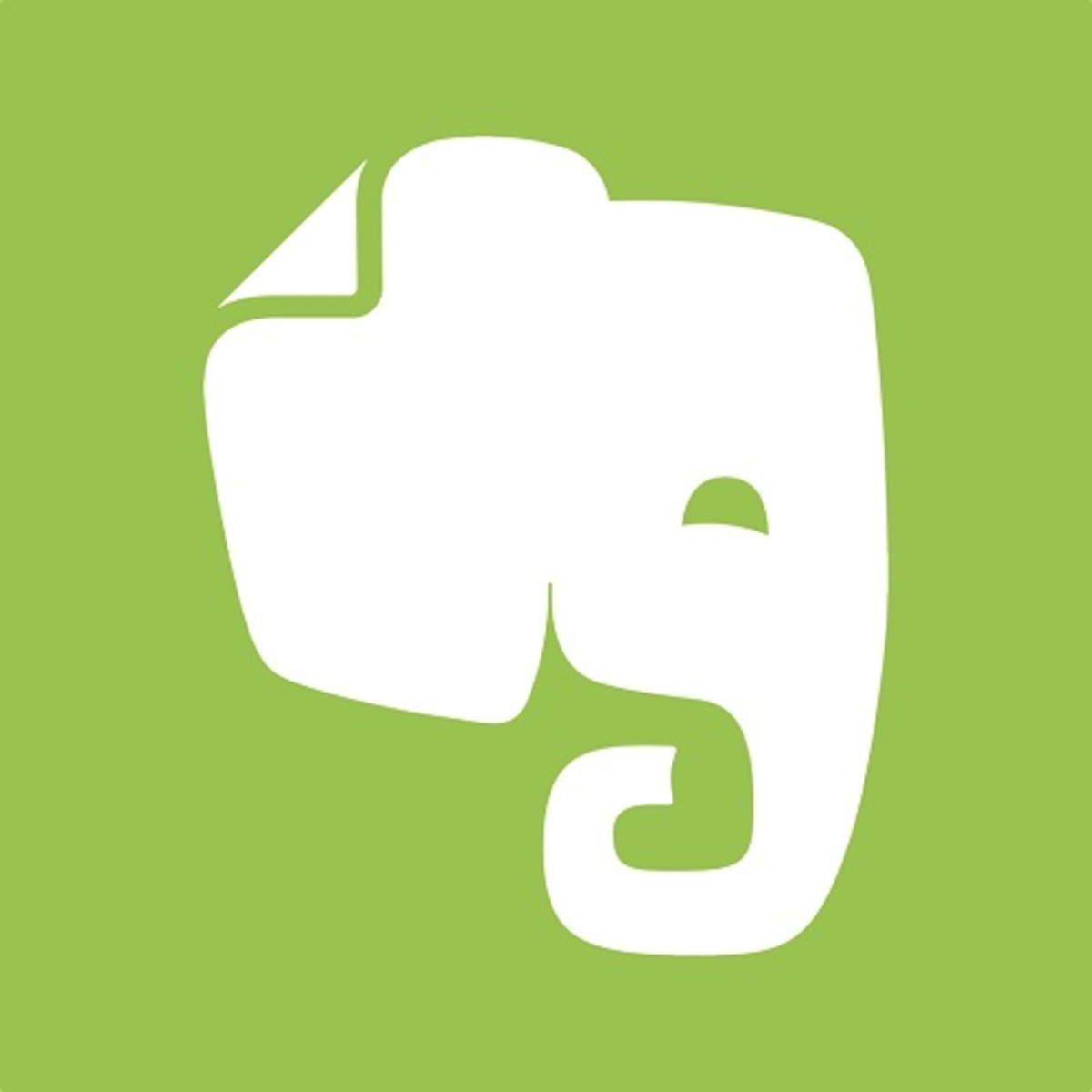 Evernote icon image