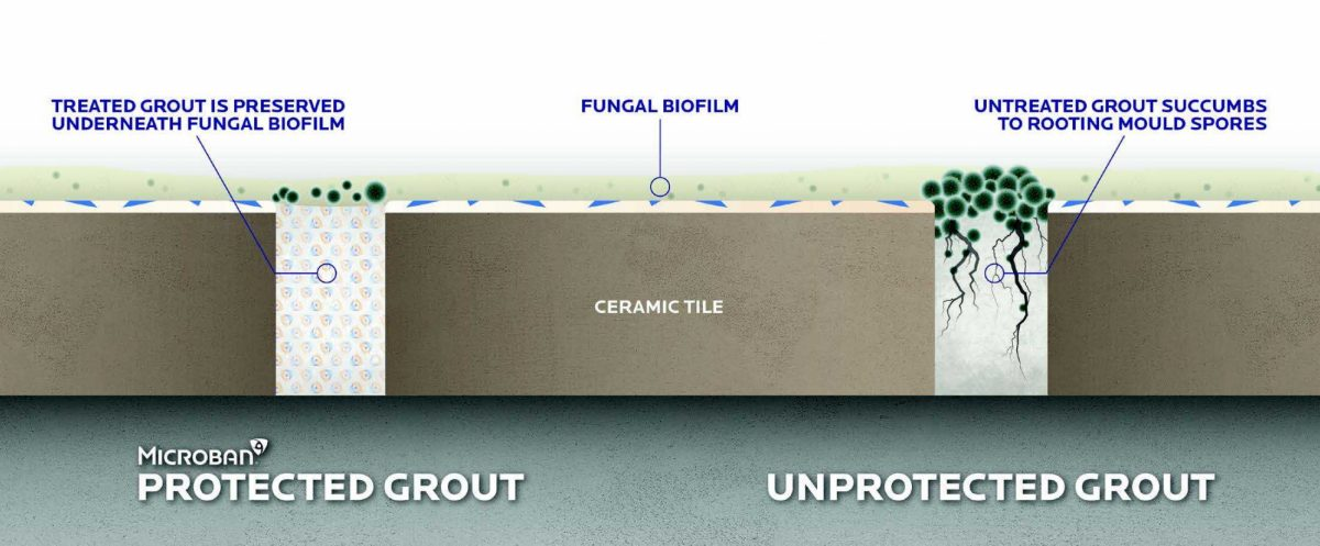 Mb Effects Of Biofilm Growth 4Pp