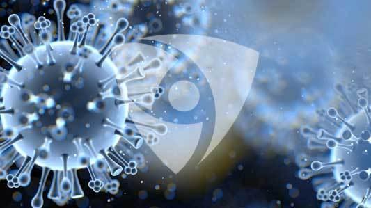 Safer than nanotechnology mtime20190225200936