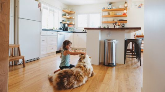 Don't Let Microbes Walk All Over Your Floors
